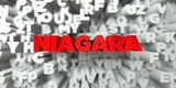 NIAGARA -  Red text on typography background - 3D rendered royalty free stock image. This image can be used for an online website banner ad or a print postcard.