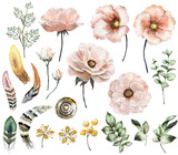 Set vintage watercolor elements of rose, collection garden, wild flowers, leaves, branches flowers, illustration isolated on white background, eucalyptus, bird  feathers, tribal, ethnic, indian, berry - 126224437