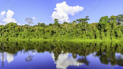 Tuinposter Rio de Janeiro Palumeu in Surinam