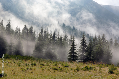 foggy meadow in mountains - 126272221