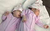 the newborn twins