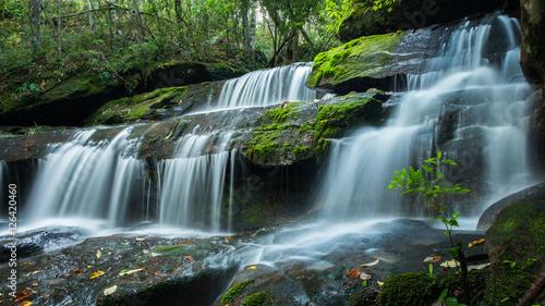 Beautiful waterfall in deep jungle