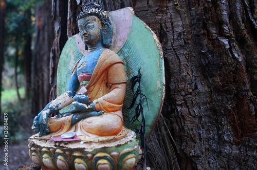 Billede Bunter Buddha sitzt vor einem Baumstamm und meditiert.
