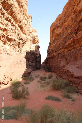 Poster Wadi Rum Trip