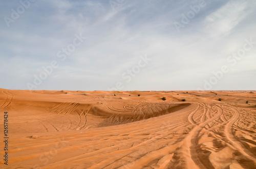 Poster Spuren im Sand der Wüste