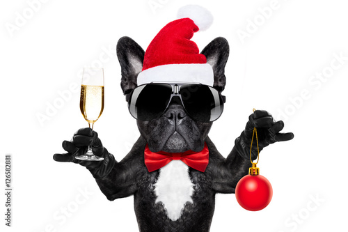 Foto op Plexiglas Crazy dog santa claus christmas dog