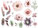Set vintage watercolor elements of rose, collection garden and wild flowers, leaves,  illustration isolated, bird feathers, berry, herbs,  tribal, ethnic, indian style - 126663875