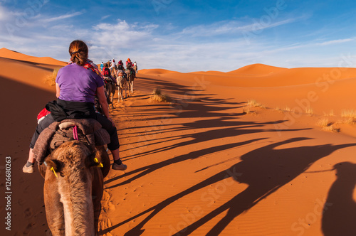Poster Karawane in den Dünen der Sahara bei Merzouga (Erg Chebbi); Marokko