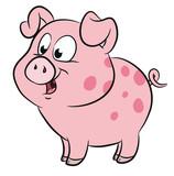 Niedliches Schweinchen - 126685453