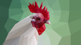polygonal cock head
