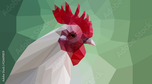 polygonal cock head - 126691859