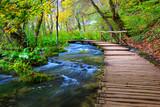Fototapety Boardwalk in the park Plitvice lakes