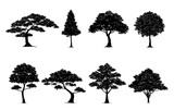 silhouette tree set - 126731231