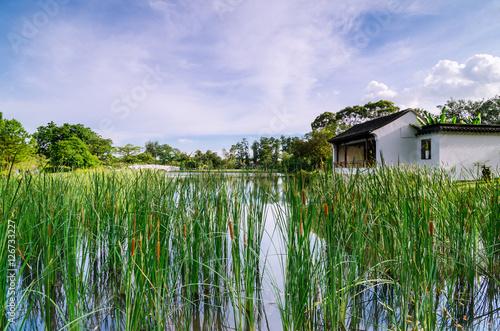 Obraz na plátne Pavilion of Bonsai Garden