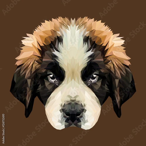 Saint Bernard puppy dog low poly design. Triangle vector illustration. © shekularaz