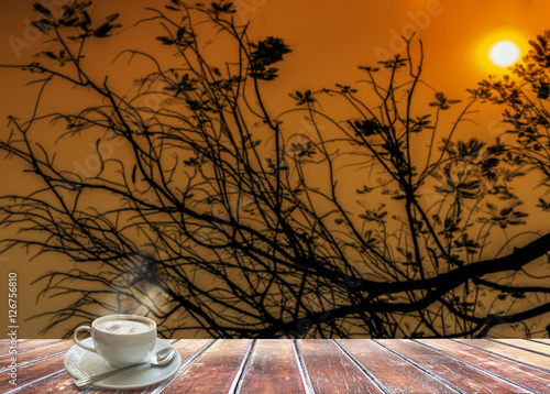 Silhouette of tree branch during twilight sky and sun set with g Poster