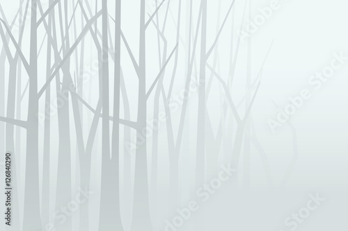 Foggy forest. Vector illustration - 126840290