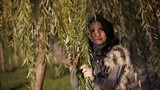 beautiful girl among the branches a willow tree