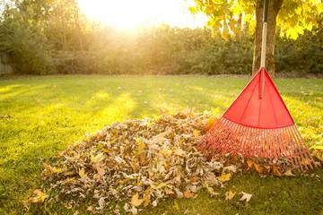 Autumn Chores