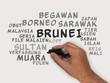 Постер, плакат: Brunei