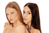Beauty portrait of a two beautiful young women, studio white