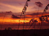 Sunset - Treasure Island, Florida