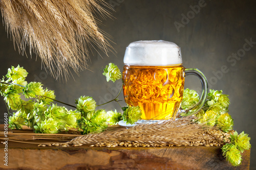 Glass of beer and raw material for beer production Poster