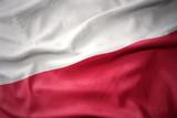 waving colorful flag of poland.