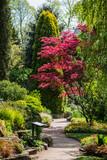 Springtime in Public English Garden