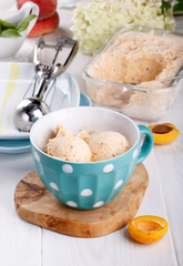 Homemade fruit apricot ice-cream in a cup