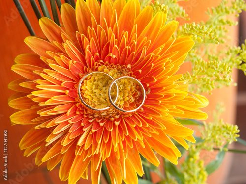 Poster Anillos sobre flor color naranja