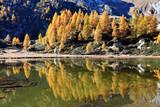 Colori utunnali riflessi sul lago (Champas)