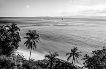 Côte de l'île tropicale. photo noir-blanc.