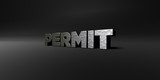 PERMIT - hammered metal finish text on black studio - 3D rendered royalty free stock photo. This image can be used for an online website banner ad or a print postcard.