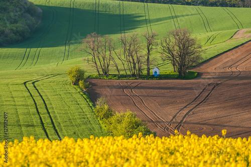 Papiers peints Cappuccino Rural landscape with fields