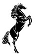 standing black horse vector design