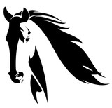 wild horse head black and white vector design - 127276608