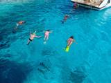 Snorkeling in Red Sea - 127277699