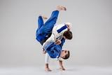 Fototapety The two judokas fighters fighting men
