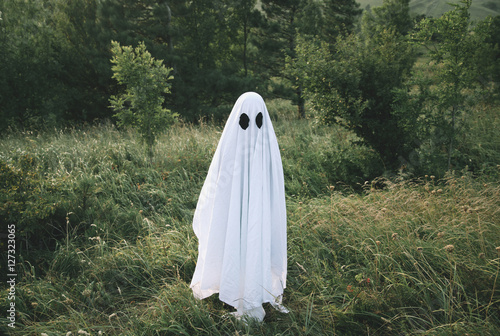 Small white ghost Poster