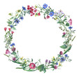 Leinwanddruck Bild - Wreath border frame with summer herbs, meadow flowers. Watercolor hand painting illustration on isolate white background.