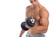 Постер, плакат: Bizeps trainieren Bodybuilder Bodybuilding Muskeln Training Hant