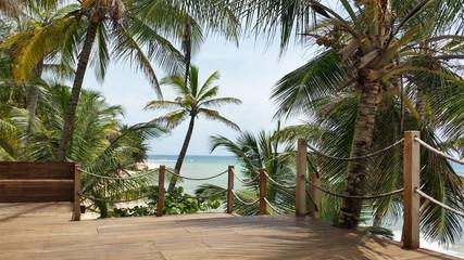 isola con palme Craibi