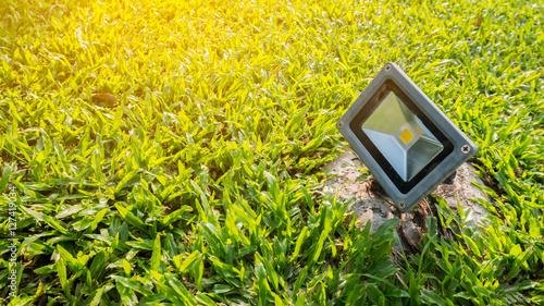 Papiers peints Jaune Garden light on grass background