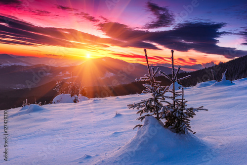 Fotografiet Majestic sunrise in the  winter mountains