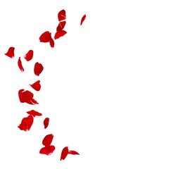 Red rose petals scattered on the floor in a semi-circle