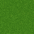 Green grass seampess texture - summer background