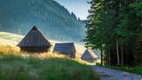 Wonderful sunrise in Valley Chocholowska, Tatra Mountains in Poland