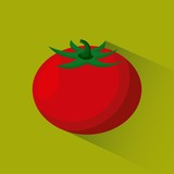 red tomato vegetable food icon over green background. vector illustraiton