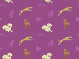 Dog Wallpaper 23